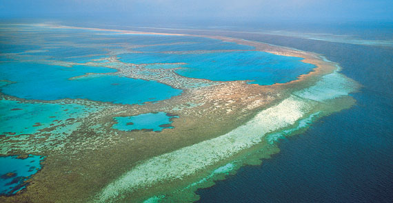 Great Barrier Reef 1981 Top Film Filme De Top